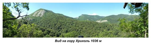 120A-VID-NA-KRIKOL.md.jpg