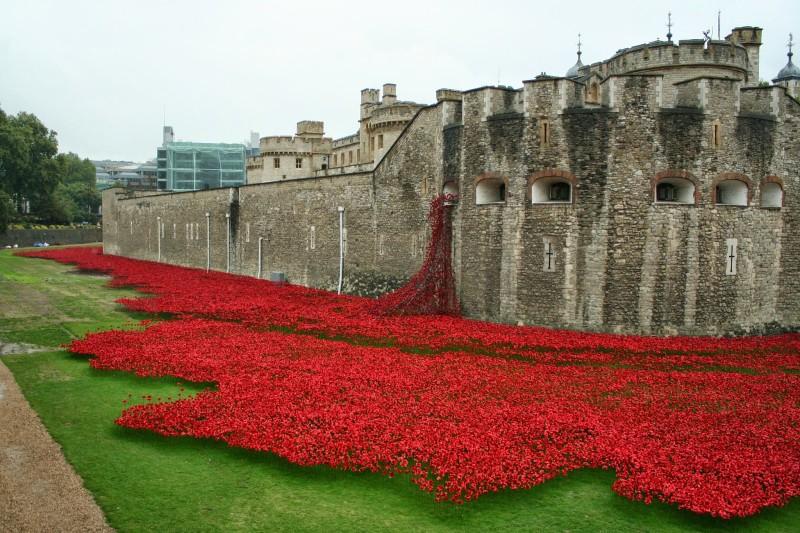 Tower_of_London_poppies_0581.jpg