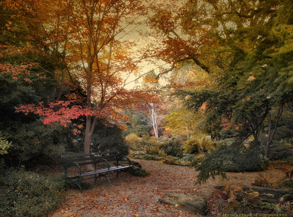 Jessica-Jenney--A-Formal-Garden.jpg