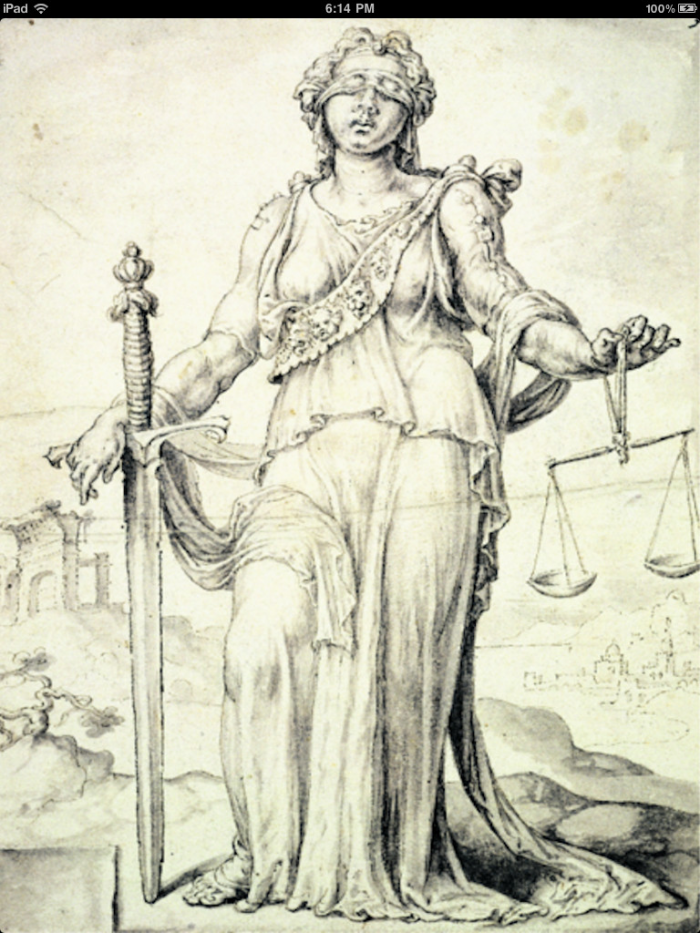 constitutional-law-the-quick-guide-3.png
