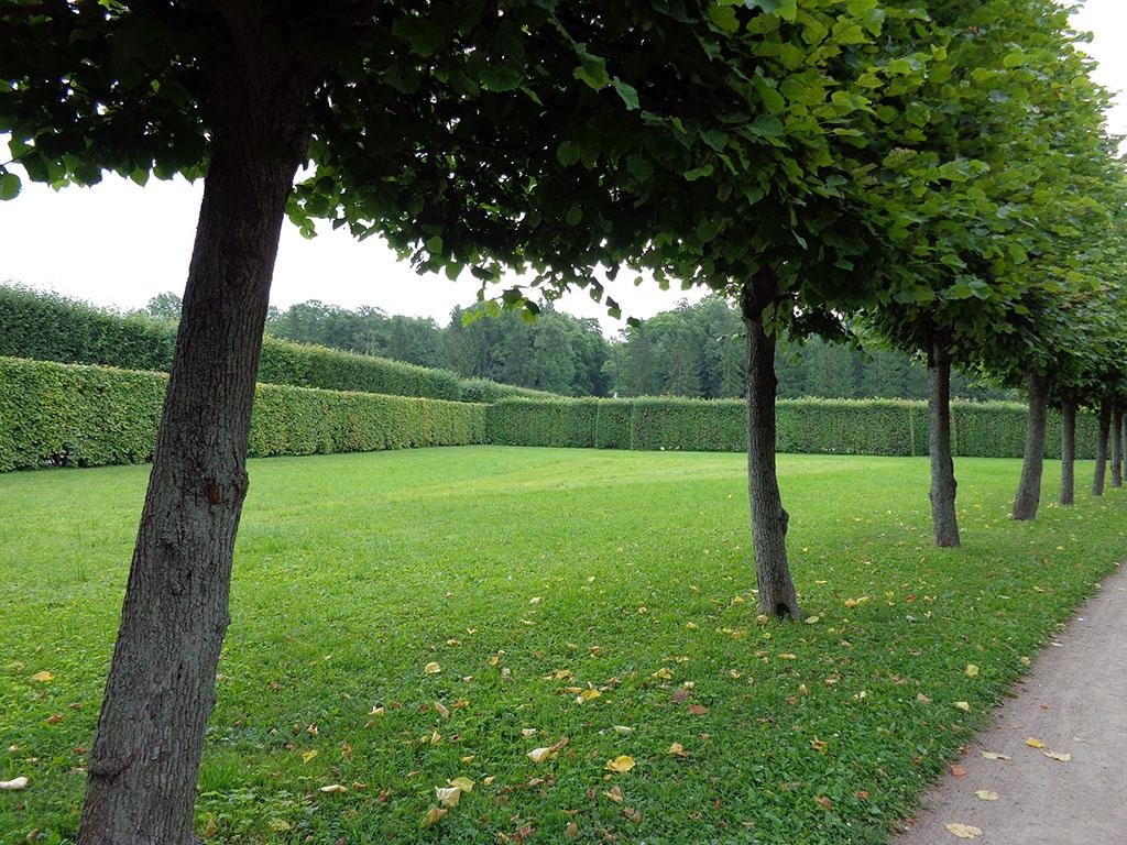 7 парк